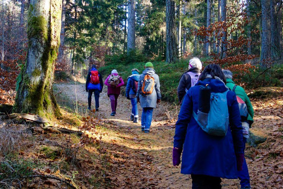 Intersein Sangha beim achtsamen Gehen im Wald